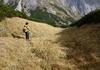 Abstieg durch die steile Latschengasse