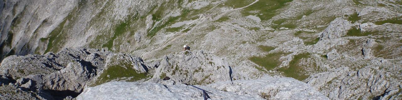 Schritte zum Gipfel (NW Rippe) - Admonter Kalbling - Gesäuse