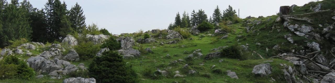 Rote Wand von Mixnitz - Grazer Bergland