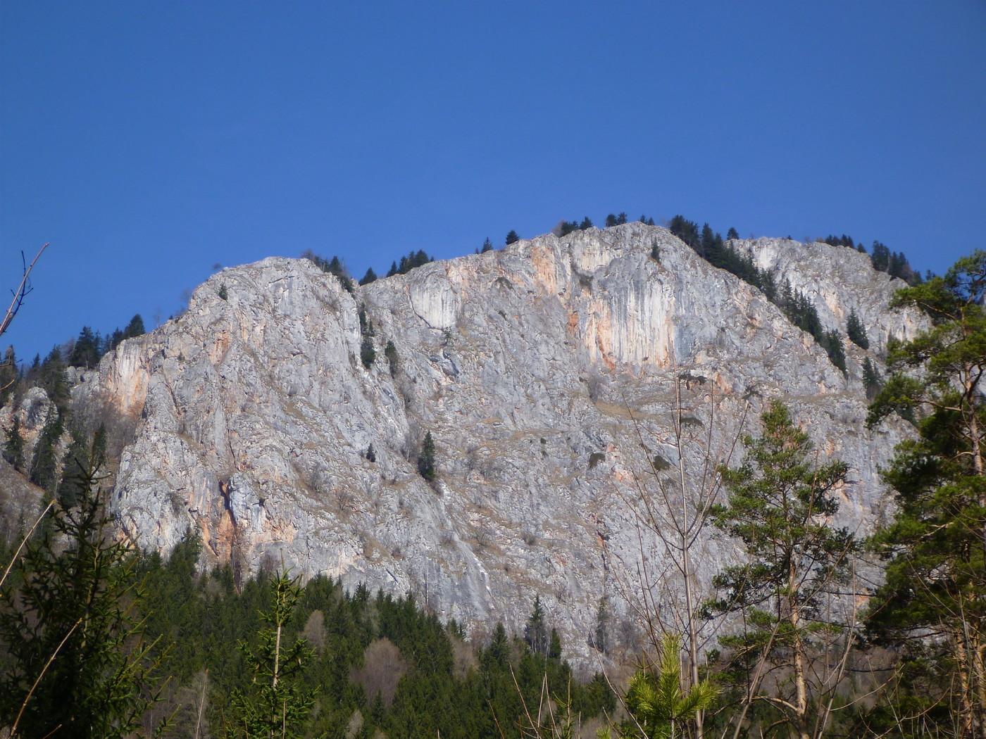 Rote wand rundwanderung ber die tyrnauer alm grazer bergland wandern gbl - Rote wand uberstreichen ...