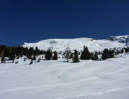 Dürrenstein von der Plätzwiese - Pragser Dolomiten - Skitour