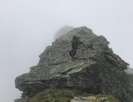 Hochwildstelle aus dem Sattental - Niedere Tauern - Wandern