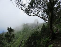 Rund um den Chinobre - Anaga - Teneriffa - Wandern