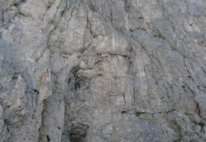 Direkte Westwand - Admonter Kalbling - Gesäuse