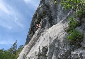 Tigerauge - Breite Wand - Grazer Bergland